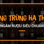 ruou-dong-trung-ha-thao-ngam-sieu-chuan